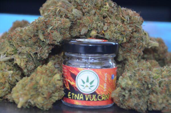 canapa legale etna vulcano marijuana light