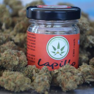 LAPILLO canapa legale marijuana light