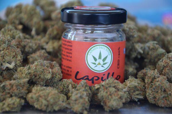 LAPILLO canapa legale marijuana light